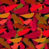 stock photo of fern  - Vector seamless pattern with leafs inspired by fall nature and plants like palm trees and ferns in multiple red colors and black - JPG