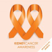 pic of sick kidney  - an orange kidney cancer awareness ribbon shape - JPG