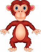 stock photo of chimp  - illustration of Chimpanzee cartoon isolated on white Note - JPG