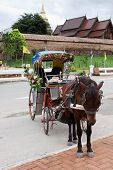 stock photo of carriage horse  - Single Horse drawn carriage in Lampang; Thailand