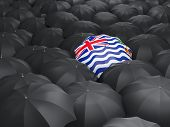 image of indian flag  - Umbrella with flag of british indian ocean territory over black umbrellas - JPG