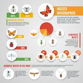 stock photo of lice  - Insects infographic set with wild pests symbols and charts vector illustration - JPG