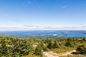 Постер, плакат: Cruise Ship In Distance From Cadillac Mountain