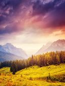 pic of breathtaking  - Great view of the foggy peak  Cresta di Enghe in Sappada - JPG