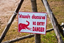 image of no entry  - sign no entry because of elephant trail - JPG