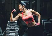 Slim Bodybuilder Girl Shows Biceps While Training In The Gym. Sports Concept Fat Burning And A Healt poster