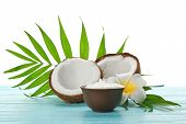Bowl with fresh coconut oil and nut on wooden table poster