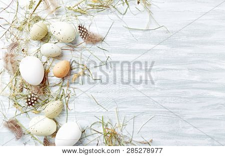Easter egs and feathers in