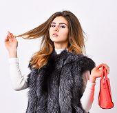 Female Stylish Fashion Model. Fashion Stylish Accessory. Fashion And Shopping Concept. Woman In Fur  poster