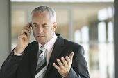 Serious middle aged businessman gesturing while using cell phone in office