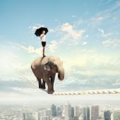 picture of dangerous situation  - Image of elephant walking on rope high in sky - JPG