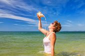 picture of conch  - Beach holiday - JPG