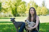 foto of greyhounds  - Young attractive girl with two greyhounds sitting in the park - JPG