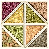 stock photo of tangram  - a variety of beans - JPG