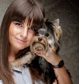 image of yorkie  - Cute young girl with her Yorkie puppy - JPG