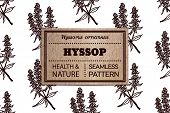 foto of hyssop  - Health and Nature Collection - JPG