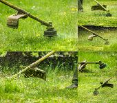 picture of grass-cutter  - collage image of closeup shot of gasoline trimmer head with nylon line cutting fresh green grass to small pieces - JPG