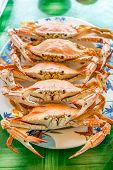 stock photo of cooked crab  - Stream Crabs on colorful dish  - JPG