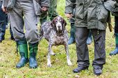 stock photo of hunter  - hunters with a dog at hunt - JPG
