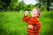 foto of blow-up  - Little boy blowing up the soap bubbles in park - JPG