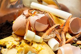 picture of inappropriate  - Organic biological kitchen waste rotten food and leftovers from cooking prepared for composting - JPG