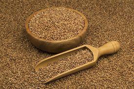 image of buckwheat  - Buckwheat groats in a bowl and wooden scoop with buckwheat - JPG