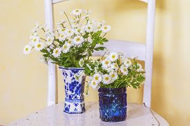 foto of feverfew  - Feverfew in vases with an vintagae look - JPG