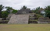 stock photo of ziggurat  - Mayan Ruins at Altun Ha - JPG