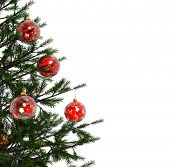 stock photo of xmas tree  - Xmas tree with red balls isolated on a white background - JPG