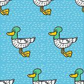 Duck Cartoon Pattern. Drake Drawing Ornament. Bird Background poster