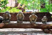 Three Monkey Statue Sit On Nature Background And Hand Small Statues With The Concept Of See No Evil, poster