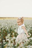 Childrens Portrait Of A Girl. Little Girl With Two Tails. Beautiful Girl In A Flowering Field. Young poster