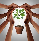 Diverse People Caring Together As A Diverse Group Uniting And Joining Hands Into The Shape Of An Ins poster