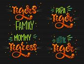 Tigers Family Set Color Hand Draw Calligraphy Script Lettering Text Whith Dots, Splashes And Whisker poster