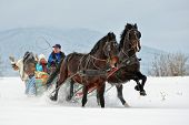 image of sleigh ride  - people with horse sledge outdoor - JPG