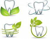 pic of human teeth  - Healthy teeth with green leafs - JPG