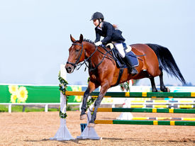 pic of horse-riders  - Equestrian sport - JPG