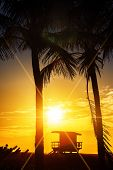 stock photo of lifeguard  - Miami South Beach sunrise with lifeguard tower and palm tree USA - JPG