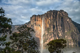 picture of canaima  - Close - JPG