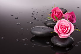 stock photo of stone-therapy  - Spa stone and rose flowers still life - JPG
