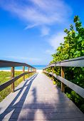 stock photo of gulf mexico  - Wooden boardwalk to ocean amond sea oats on Sunset Beach at southern tip of Treasure Island Florida on Gulf of Mexico - JPG