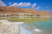 picture of sea salt  - Shores of the Dead Sea in Israel - JPG