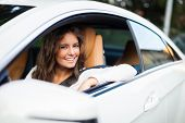 pic of steers  - Young woman driving her car - JPG