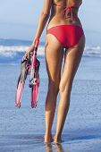 image of flipper  - Rear view of beautiful young woman in red bikini with snorkel - JPG