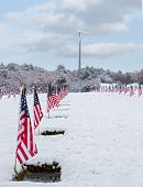 stock photo of veterans  - Snow - JPG