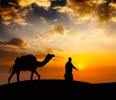 foto of camel  - Rajasthan travel background  - JPG