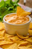 pic of dipping  - Tortilla chips with cheese dip and barbecue czech beer - JPG