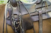 image of girth  - detail of a horse saddle - JPG