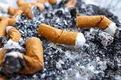 foto of butts  - Cigarette butts at ashtray  - JPG