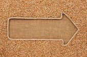 pic of sackcloth  - Pointer made from rope with grain wheat lying on sackcloth with space for your text - JPG